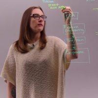 Erin Shellman, PhD