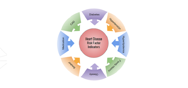 Identifying Heart Disease Risk Factors from Clinical Text